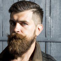 Accélérateur de barbe